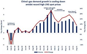 Chinese Gas Prices